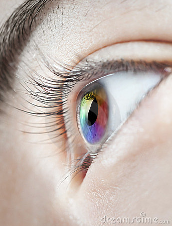 Multicoloured eye