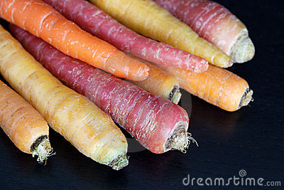 Multiculored carrots on dark background