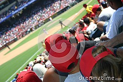 Multidão do basebol