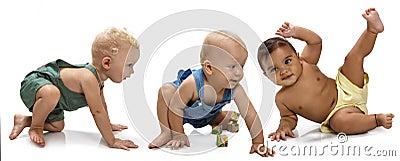 Multiethnic babies Stock Photo