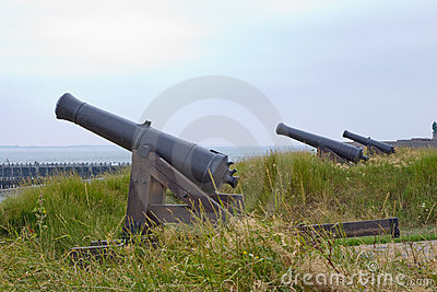 Multiple canons