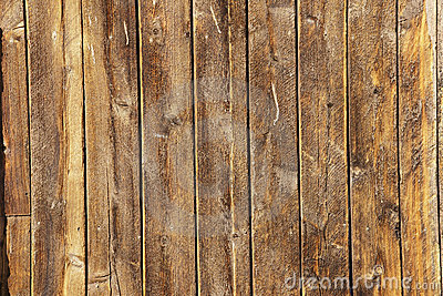 Multiple weathered wood planks