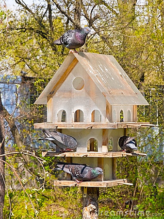 Free Multistoried House For The Birds Stock Image - 14393391