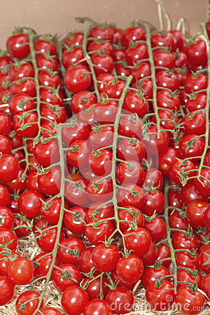 Multitude of cherry tomatoes at the market
