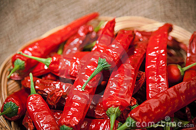 Multitude of red chili peppers
