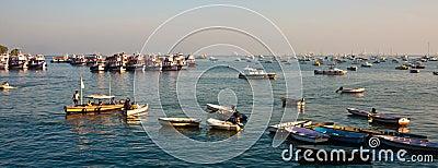 Mumbai Harbor