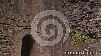 Muro de pedra| Peveril Castle, Derbyshire, Reino Unido vídeos de arquivo