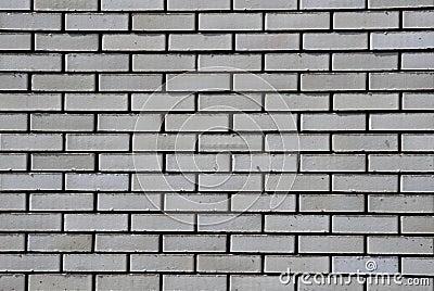 Muro Di Mattoni Bianco Immagine Stock Libera da Diritti - Immagine: 5443076