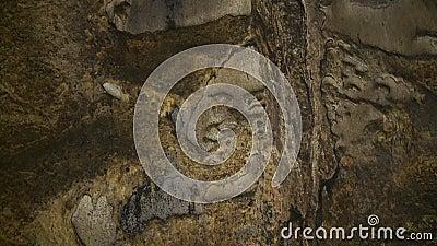 Murs En Pierre De La Grotte De Tempurung, KL, Malaisie banque de vidéos
