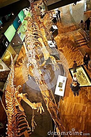 Musée Photo stock éditorial
