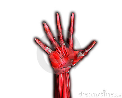 Muscle And Bone Hand