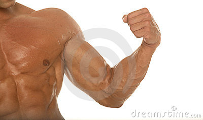Muscular athletic body builder arm