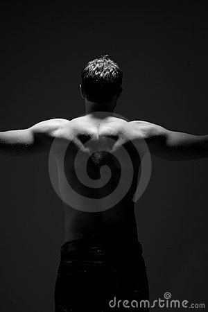 Free Muscular Back Stock Image - 6733641