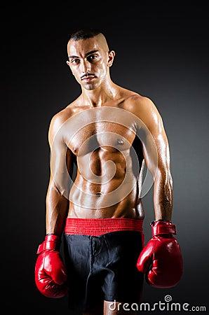 Muscular boxer