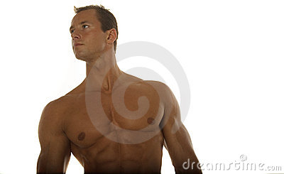 Muscular male body builder