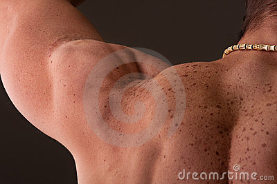 Muscular male shoulder