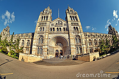 Museo de la historia natural, Londres.