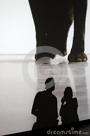 Museum of Modern Art  in New York City Editorial Stock Photo