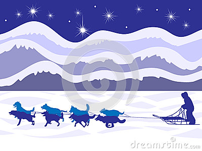 Musher and dog team by moonlight