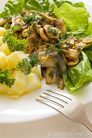 Free Mushroom Meal Stock Photos - 2264873