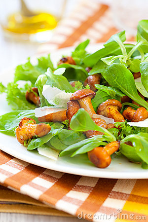 Mushroom Salad Royalty Free Stock Photography - Image: 15225877