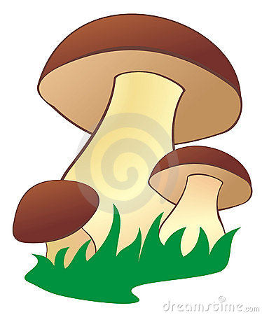 Free Mushroom2 Royalty Free Stock Photos - 11118748