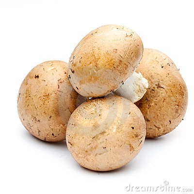 Free Mushrooms Royalty Free Stock Photos - 17429948