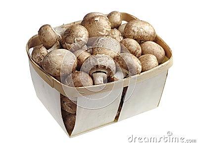 Mushrooms in a basket