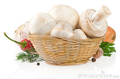 Mushrooms and food ingredient on whit