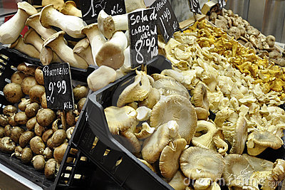 Mushrooms on the Market in Barcelona