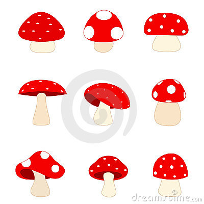 Free Mushrooms / Mushroom Royalty Free Stock Image - 17330016
