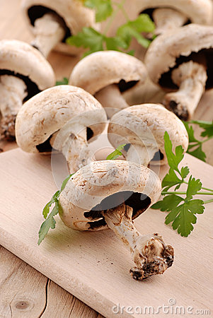 Mushrooms and parsley