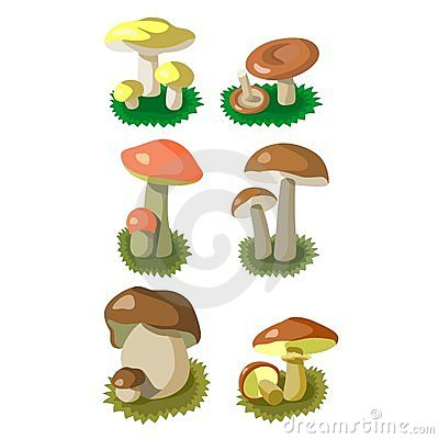 Mushrooms set 002