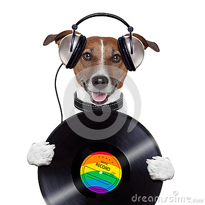 Free Music Headphone Vinyl Record Dog Stock Photos - 27178933