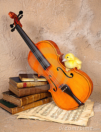 Free Music Loving Duckling Royalty Free Stock Photography - 22953537
