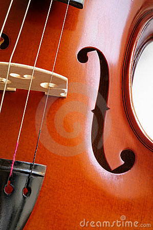 Musical instruments: violin closeup