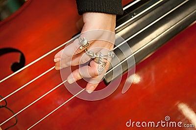 Musical string instrument