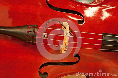 Musical string instrument