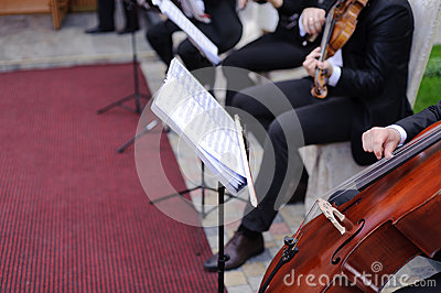 Musici in Werf