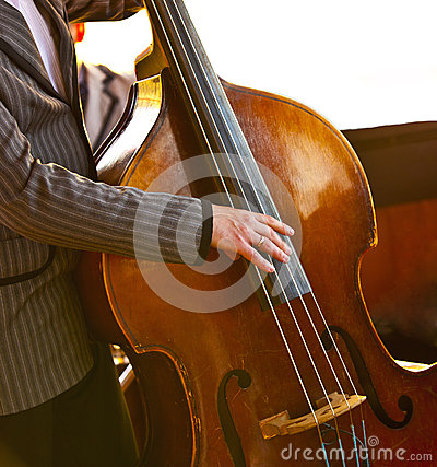 Musician playing contrabass