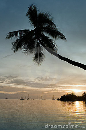 Free Musket Cove - Fiji Royalty Free Stock Photo - 15161135