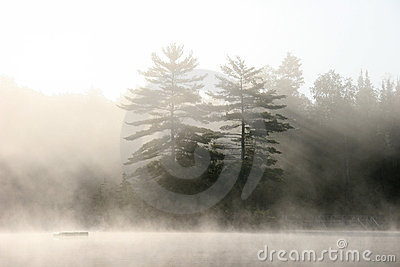Muskoka Shoreline on a Misty Morning -