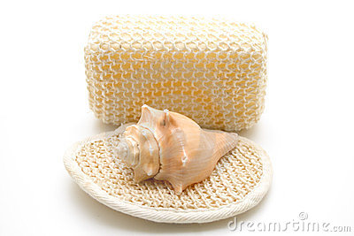 Mussel On Massage Sponge Stock Photos - Image: 23838383