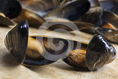 Seafood - Mussels - Moules Marinieres