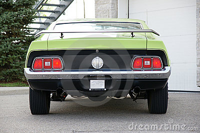 Mustang Rear End