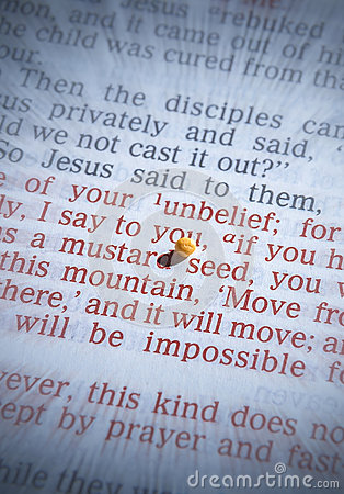 Free Mustard Seed And Open Bible Royalty Free Stock Photos - 86188488