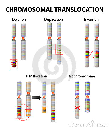 Free Mutation. Chromosome Abnormality Royalty Free Stock Photo - 66484915