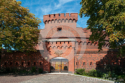 Muzeum bursztyn