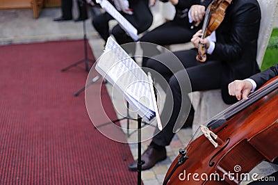 Muzycy w jardzie