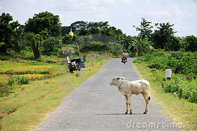 Myanmar landscape with a small road Editorial Stock Photo